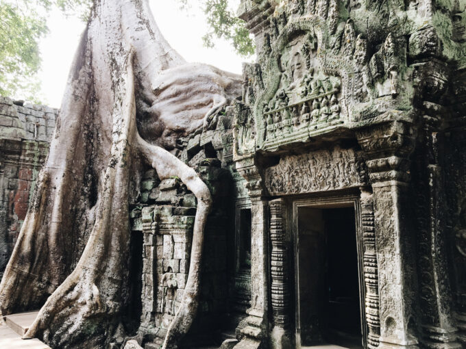 Exploring Ta Prohm | With so many things to do in Siem Reap, I felt like I barely scratched the surface and am looking forward to being back again. With lots of backpacers' style hostels and bars/restaurants that open from early morning to midnight (at least), there's plenty of things to do and see in Siem Reap beyond just Angkor Wat