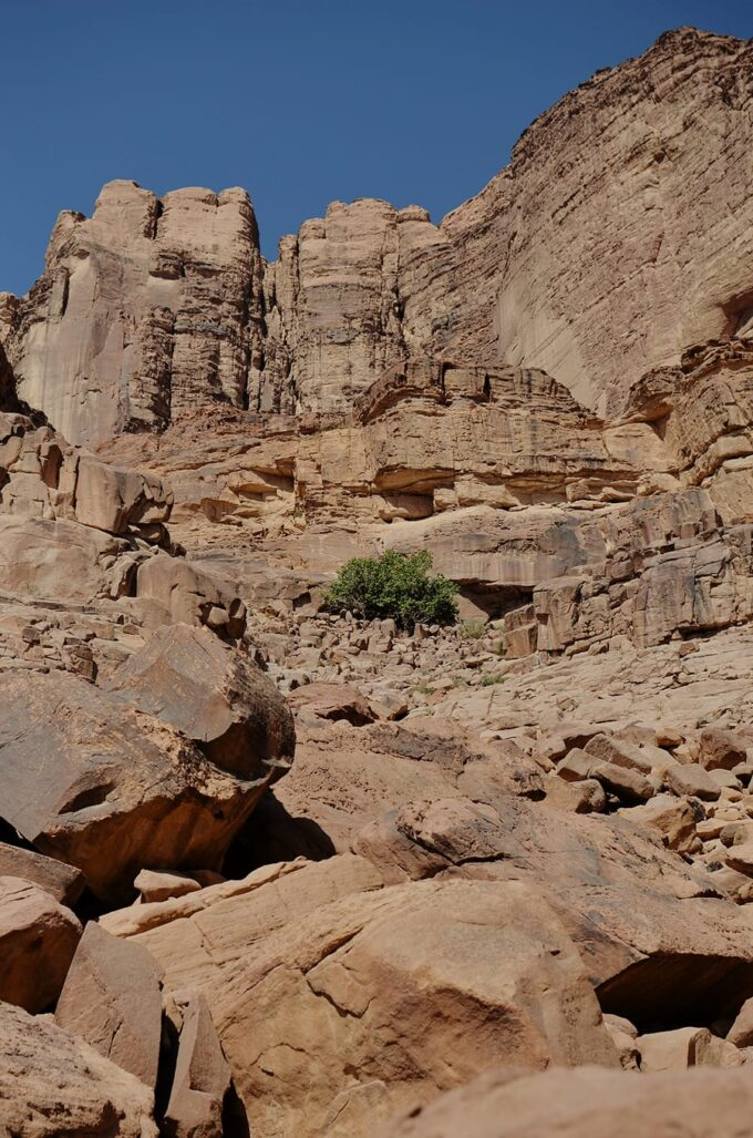 Overnight in Wadi Rum | Sleeping in the Desert - Lots of Nabatean inscription can be found on the rocks at Lawrence Spring