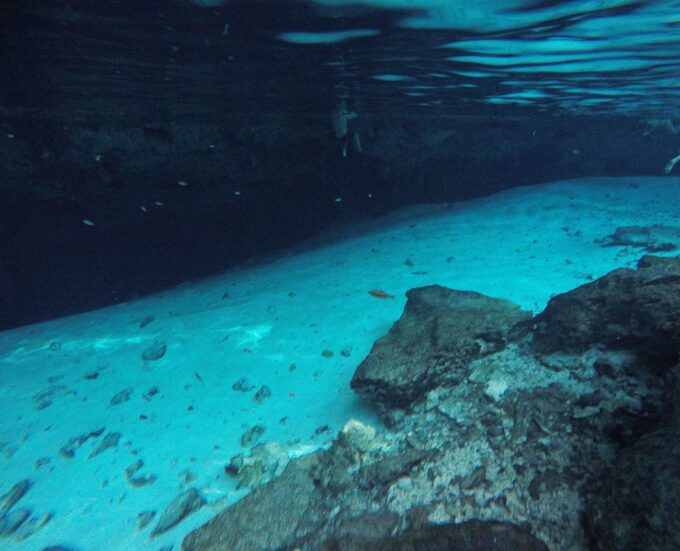 Postcard From | Visiting Cenotes in Mexico 5
