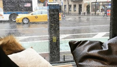 new-york-travel-blog-10